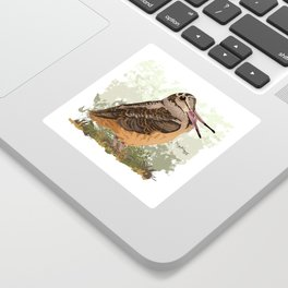 Peent! (American Woodcock) Sticker