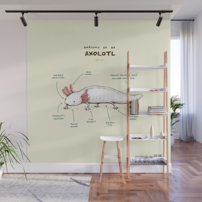 Anatomy of an Axolotl Wall Mural