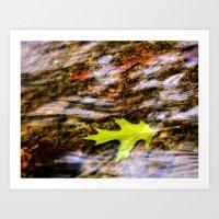 underwater Art Prints featuring underwater by Bonnie Jakobsen-Martin
