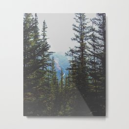Mountainview Metal Print