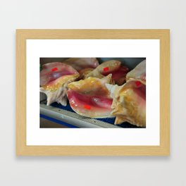 Conch shells with stickers Framed Art Print