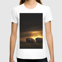 Two American Buffalo Bison with Moon Rise T-shirt