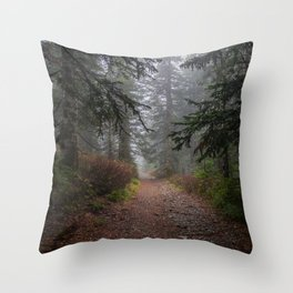 Erie Throw Pillow