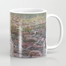 Tiny Plants Coffee Mug