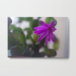 Easter Cactus Metal Print
