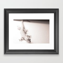 Gecko on a wall waiting for flies in Ho Chi Minh City, Vietnam  Framed Art Print