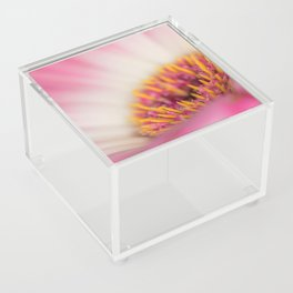 Sexy Pink Makes You Think Acrylic Box
