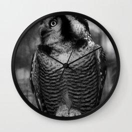 Owl series no.1 Wall Clock