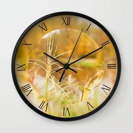 Miscanthus straw ornamental grass macro Wall Clock