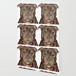 Sallie the dog Wallpaper