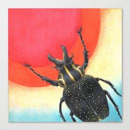 Sun Catcher Canvas Print