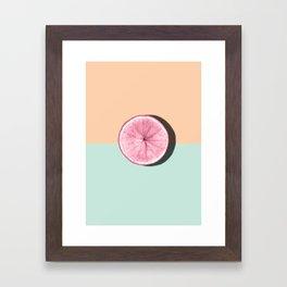 Citrus #01 Framed Art Print