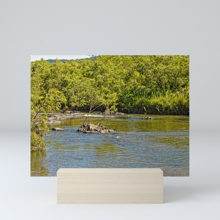 Beautiful river in the tropics Mini Art Print
