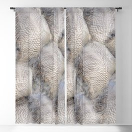 Glowing feathers Blackout Curtain