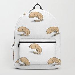 Guar Backpack