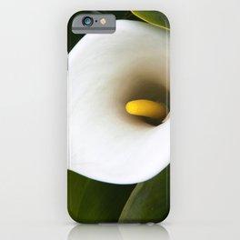 Calla Lily growing in a Garden iPhone Case