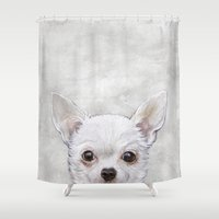 chihuahua Shower Curtains featuring Chihuahua by MiartDesignCreation