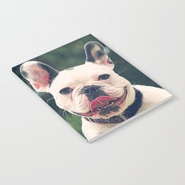 Frenchie Swings Notebook