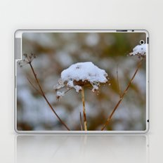 Snow Fall Laptop & iPad Skin