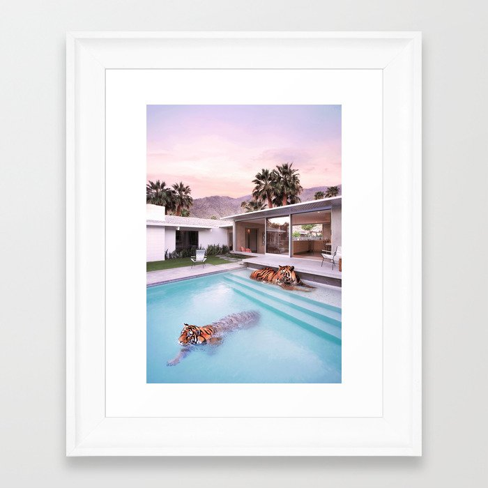 Palm Springs Tigers Gerahmter Kunstdruck