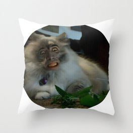 Nicolas Cage Cat Wants Nip Throw Pillow