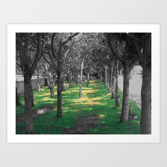 Among trees Art Print