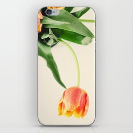 Ravel iPhone Skin
