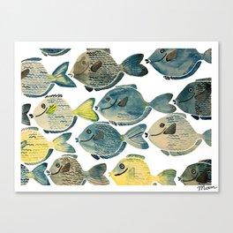 Blue Tang Canvas Print