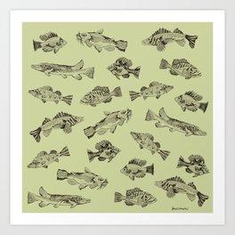 Fish of Lake Como (Green Background Version) Art Print