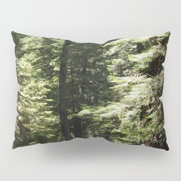 Humboldt State Park Road Pillow Sham