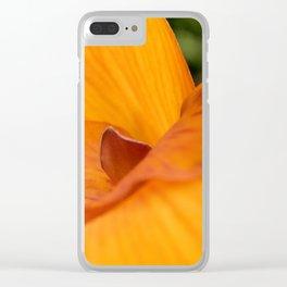 Alycia Clear iPhone Case