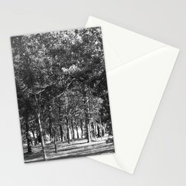 Black-and-White Woods Stationery Cards