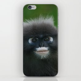 Dusky Leaf Monkey Portrait iPhone Skin