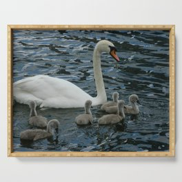 Mute Swan & Cygnets Serving Tray