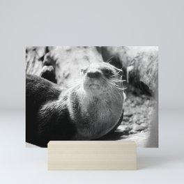 Otter in Thought Mini Art Print
