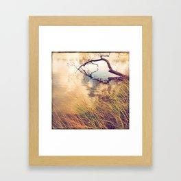 Autumn lake grasses Framed Art Print