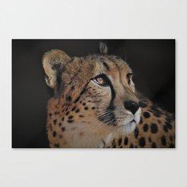 Cheetah Love - Photography Canvas Print