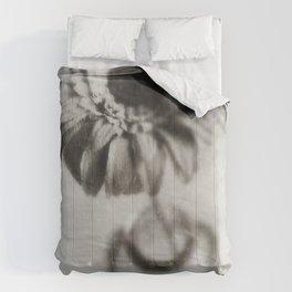 Delicate Comforters