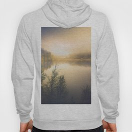 The perfect organism Hoody