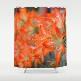 Pattern #8 Shower Curtain
