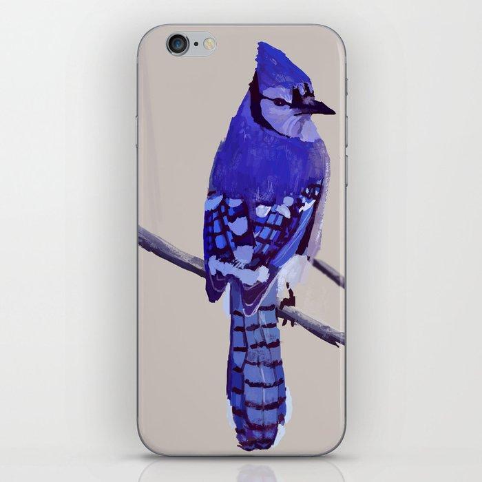 Blue Jay Bird iPhone Skin