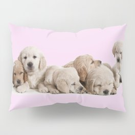 Golden Retriever Puppies Pillow Sham