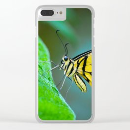 Butterfly , cute insect with multicolor colored wings sitting on green leaf on natural background. W Clear iPhone Case