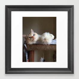 ZombieCat with Chick Framed Art Print