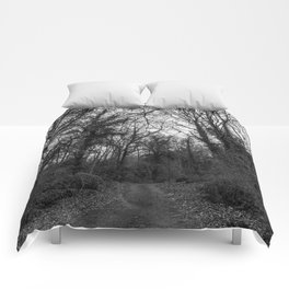 Monochromatic forest path Comforters