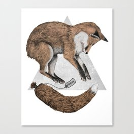 The Fox Who Lost His Tail Canvas Print