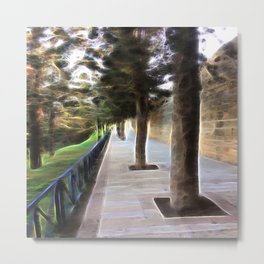 Gavriel's Path Metal Print