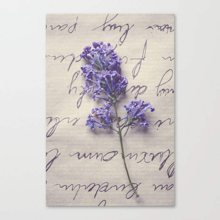 Love Letter With Lilac Canvas Print