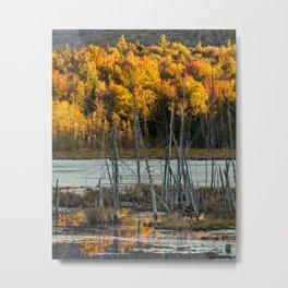 flaming landscape Metal Print