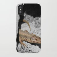 lizard iPhone & iPod Cases featuring Lizard by Anja Kidrič AdAk